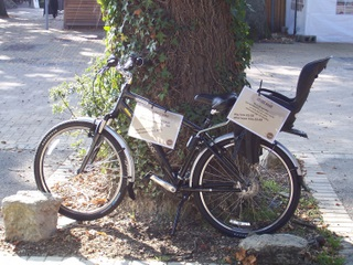 Sandy Balls Childs Bike for Hire