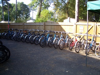 New Forest Sandy Balls bike hire