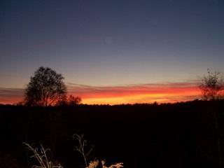New Forest sunset near Sandy Balls