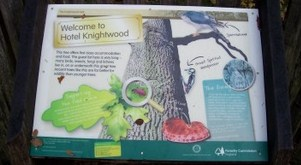New Forest Knightwood Oak  info board