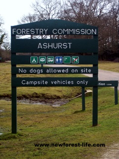 New Forest Ashurst Campsite Entrance Board