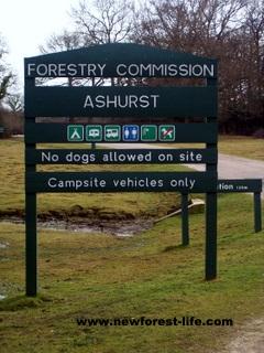 New Forest Ashurst Campsite Entrance Board