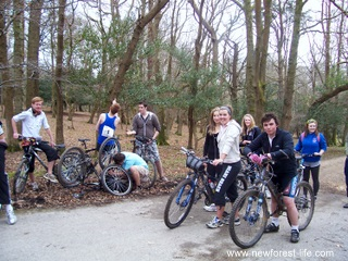 New Forest cycling Denny Wood
