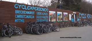 New Forest Cycle Hire Brockenhurst