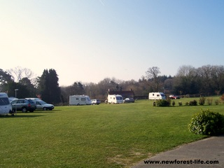 New Forest Gorse Farm Caravan Park