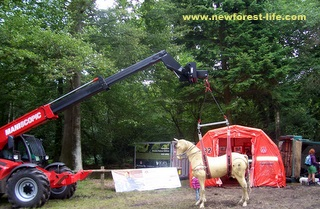 New Forest Show Hants Fire & Rescue equipment on display