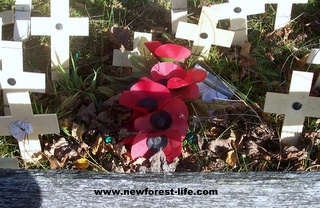New Forest Canadian War memorial Poppy Day