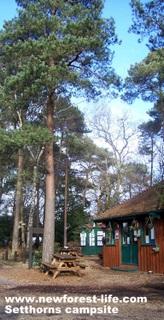 New Forest Setthorns Main Entrance