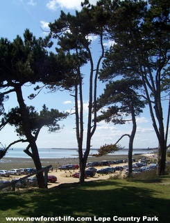 New Forest Lepe Country Park sea view