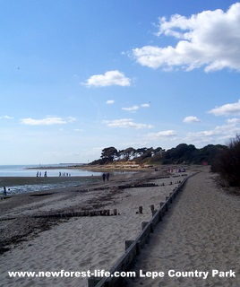 New Forest Lepe Beach-long view