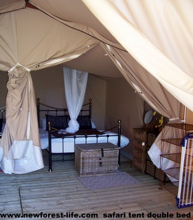 New Forest Holmsley Safari Single Bed