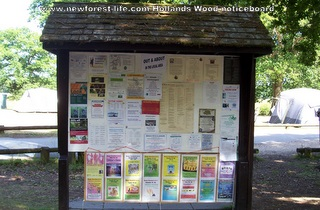 New Forest Hollands Wood Notice Board
