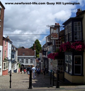 New Forest Lymington Quay Hill-Near Holmsley
