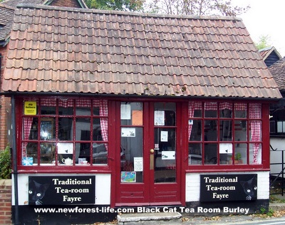 New Forest Black Cat Burley