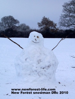 New Forest snow man