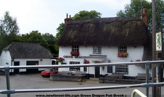 New Forest Green Dragon Pub at Brooke