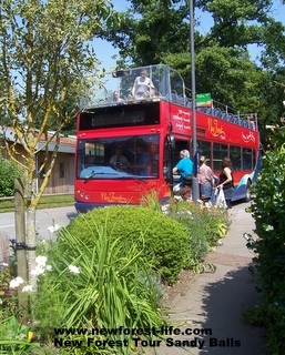 New Forest Tour bus at Sandy Balls