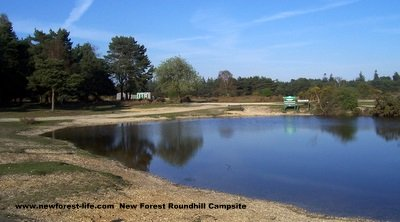 New Forest Roundhills Campsite Pond