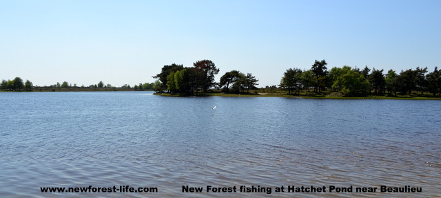 New Forest Hatchett Pond Beaulieu