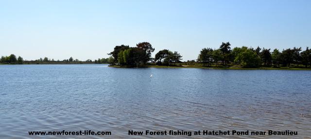 New Forest Hatchett Pond Beaulieu