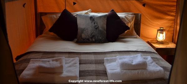 New Forest safari tent bedroom at Sandy Balls