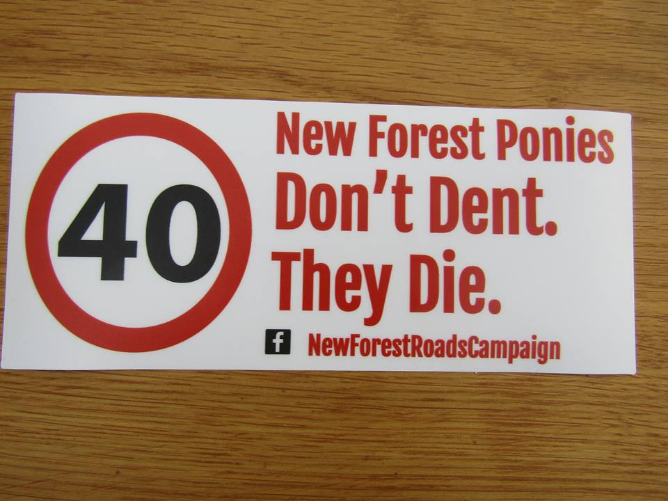 New Forest Roads Campaign new safety banner from eBay