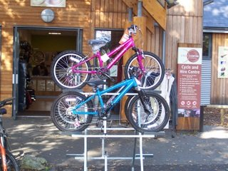New Forest Cycle Hire at Sandy Balls