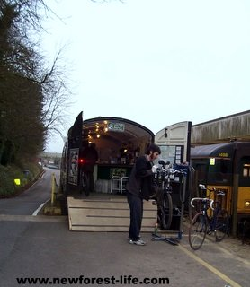New Forest Country Lanes Bike Hire