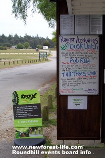 New Forest Roundhills info tent events