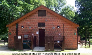 New Forest Hollands Wood dog wash area
