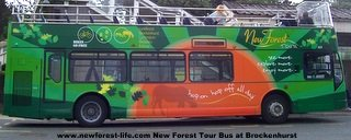 New Forest Tour Bus - side on