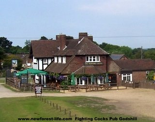 New Forest Fighting Cocks Pub at Godshill from tour bus
