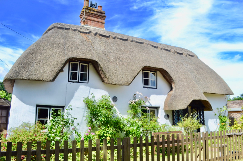 New Forest thatched cottage for sale - with Commoning Rights too. The kitchen is beautiful!