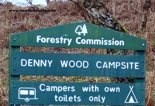 New Forest Denny Wood Entrance Board